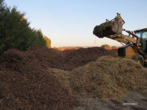 compost de déchets verts en préparation